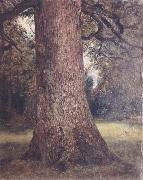 John Constable Study of the trunk of an elm tree oil painting picture wholesale